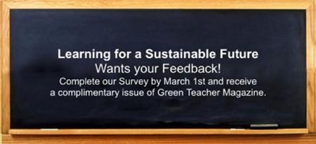 LSF Survey 2010