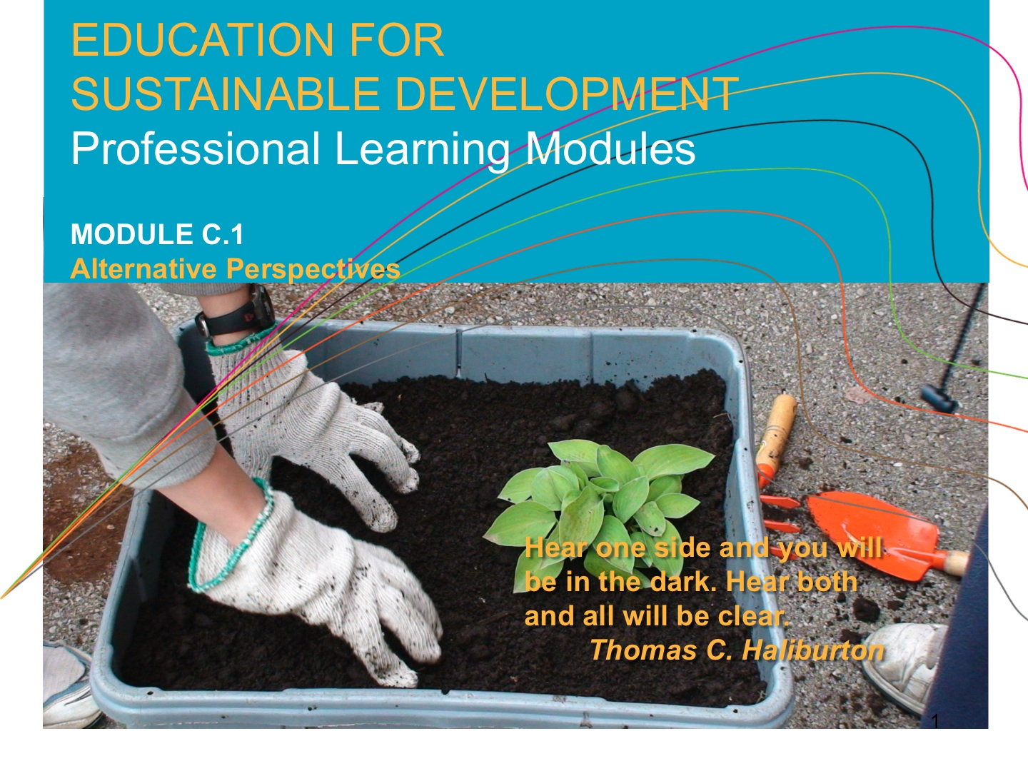 teaching and learning for a sustainable future pdf