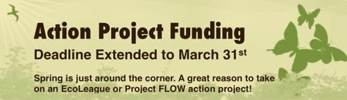 Spring Funding 2010